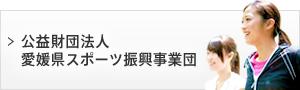 公益財団法人愛媛県スポーツ振興事業団